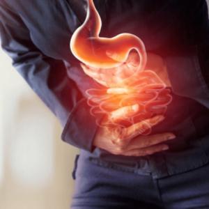 Problemas Gastro-Intestinais - Serviços de Nutrição Ana sousa Nutricionista